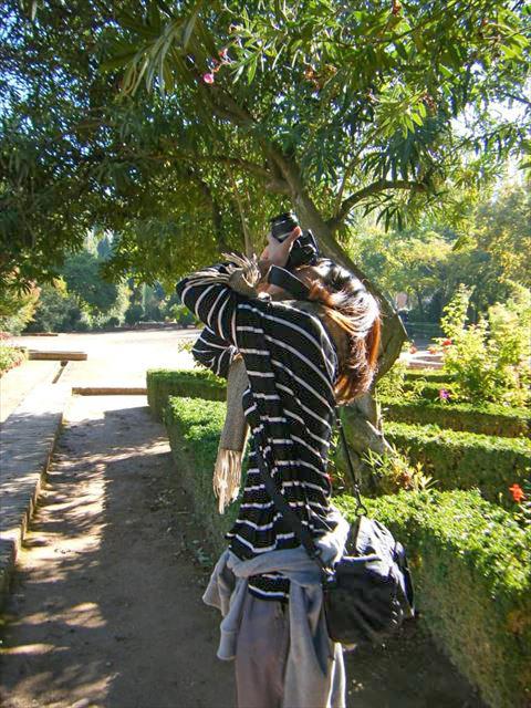 アンダルシア地方への出張で、ネタ用の写真を撮る堀さん。